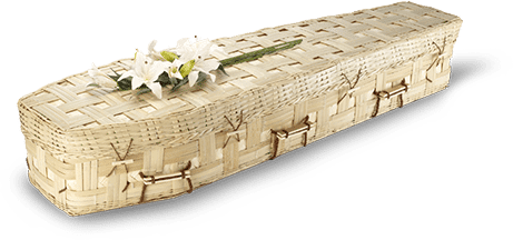 Eco coffin made from bamboo with white lily on top