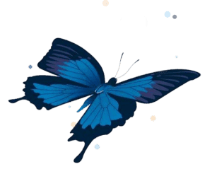 Chrysalis care Fostering London - Butterfly logo